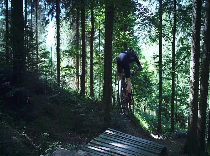 mejores bicicletas de montaña para principiantes